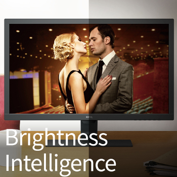 GL2480 Technologia Brightness Intelligence